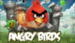 Obal-Angry Birds