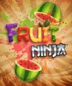 Obal-Fruit Ninja