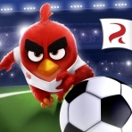 Obal-Angry Birds Goal!