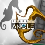 Obal-Perfect Angle