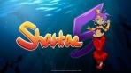 Obal-Shantae 5
