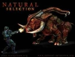 Obal-Natural Selection