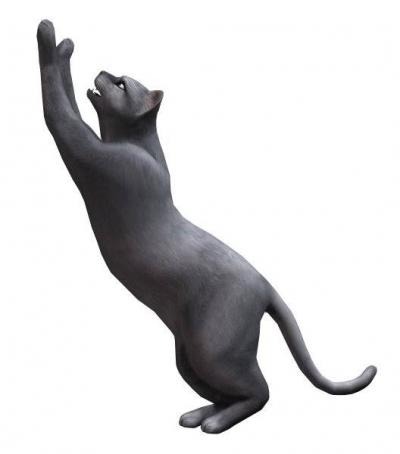 Artwork ke hře The Sims 2: Pets