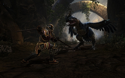 Screen ze hry Kingdoms of Amalur Reckoning