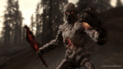 Screen ze hry The Elder Scrolls V: Skyrim - Dragonborn