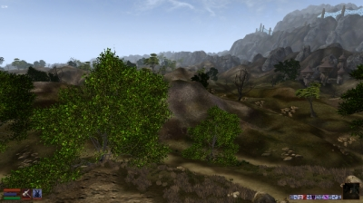 Screen ze hry Elder Scrolls III: Morrowind, The
