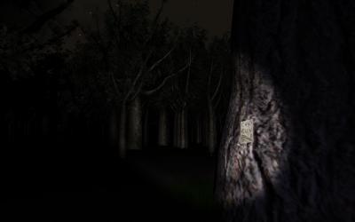 Screen ze hry Slender