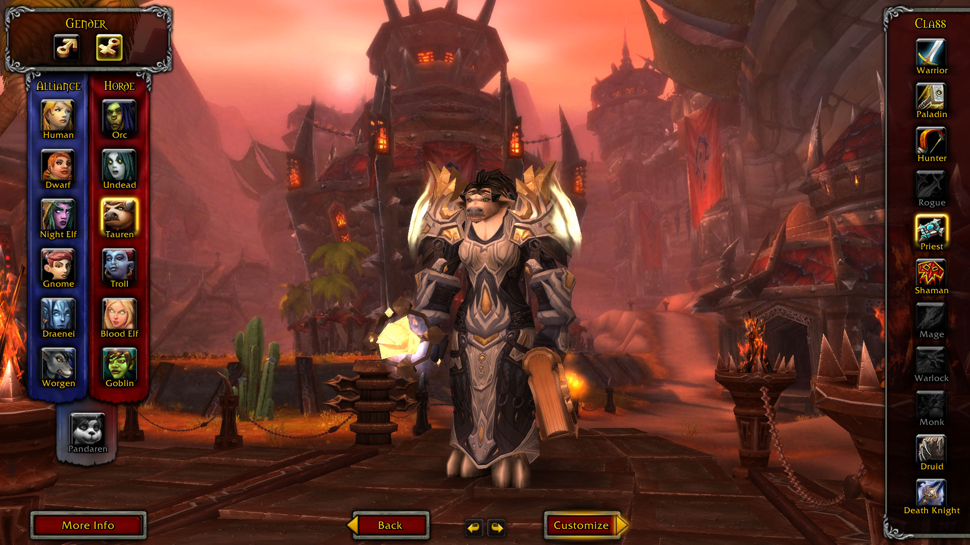 Horde blood elf hunter leveling guide sexy images