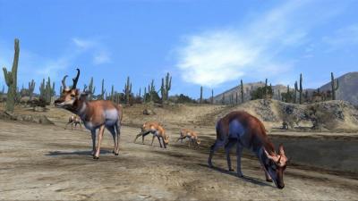 Screen ze hry Cabela´s Big Game Hunter Pro Hunts