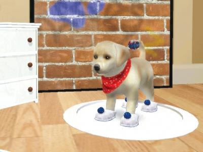 Screen ze hry Petz Dogz 2