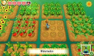 Screen ze hry Story of Seasons