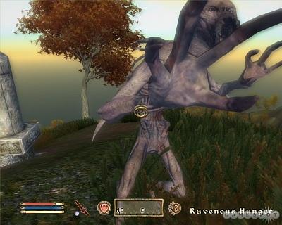 Screen Elder Scrolls IV: The Shivering Isles, The