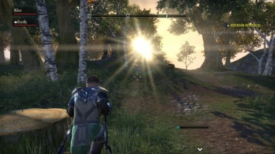 Screen ze hry The Elder Scrolls Online