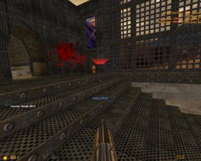 Screen ze hry Deathmatch Classic