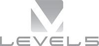 Level 5